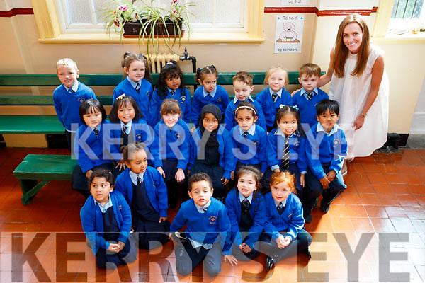 presentation primary school tralee