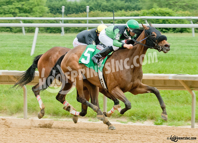 Hope Still Springs winning at Delaware Park on 5/27/13.