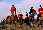 Fox hunting,  Belvoir Hunt, Leicestershire, 1980s,