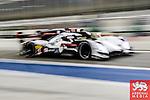 Audi Motosport