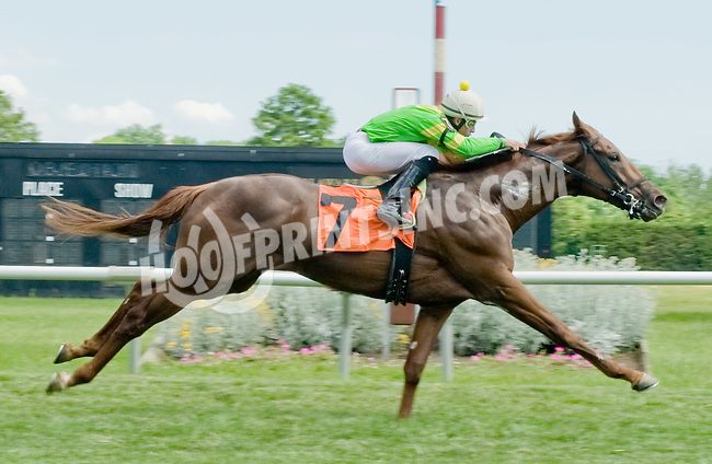 Mega Boom winning at Delaware Park on 6/6/12
