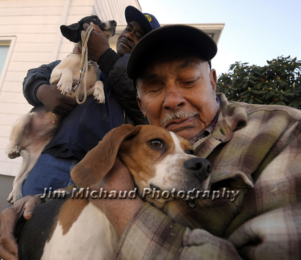 (Winner Nat'l Press Photog Ass General News Winner) Richard Johnson, foreground, becomes emotional as he holds one of the two surviving hunting dogs named Lucy,  his godson Ray Shelton holds other named Seven, 3 of their beagles were shot during a hunting incident almost two weeks ago in Suffield Police and DEEP are  investigating the case, Thursday, December 6, 2012, at Johnson's home in Hartford. (Jim Michaud/Journal Inquirer)