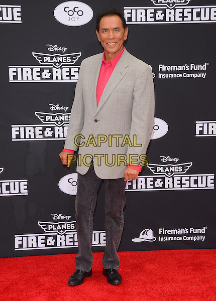 15 July 2014 - Hollywood, California - Wes Studi. Arrivals for the premiere of Disney's &quot;Planes: Fire and Rescue&quot; held at the El Capitan Theater in Hollywood, Ca. <br /> CAP/ADM/BT<br /> &copy;BT/ADM/Capital Pictures