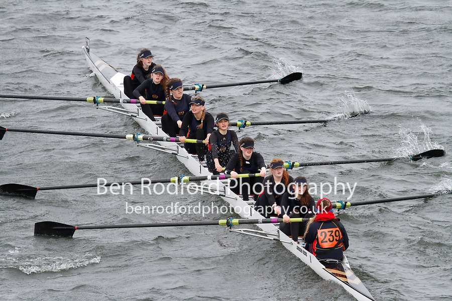 Crew: 239  Enniskillen Royal Boat Club - Ireland  Event: Girls J16 CHAMP eights<br /> <br /> Schools' Head of the River 2017<br /> <br /> To purchase this photo, or to see pricing information for Prints and Downloads, click the blue 'Add to Cart' button at the top-right of the page.