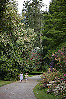 A couple of children run hand in hand along the gravel path in the rhododendron grove