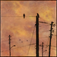 Encaustic photography of birds on power poles with orange sunset sky.