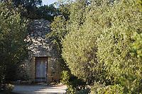 Europe/France/Languedoc-Roussillon/30/Gard : Capitelle et Oliviers  au  Site  du  Pont du Gard - Mémoire de Garrigue,  consacré au Paysage méditerranéen