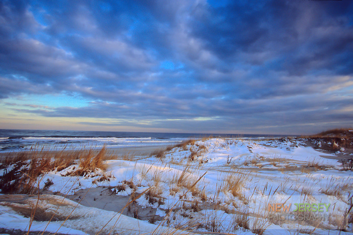 Coastal Sand Dunes, covered in winter snow, Island Beach & Atlantic Ocean, New Jersey