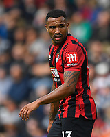 Callum Wilson of AFC Bournemouth during AFC Bournemouth vs Sheffield United, Premier League Football at the Vitality Stadium on 10th August 2019