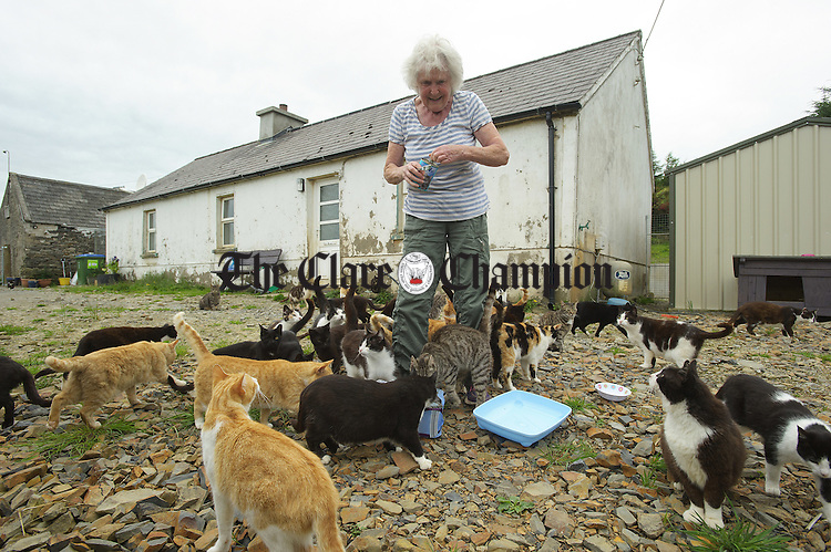 "Dr. Rhona M. Lucas feeding some of her hundred and fifty cats at the ""An Cat Dubh Sanctuary"" in Clounlaheen, near the Hand. Photograph by John Kelly."