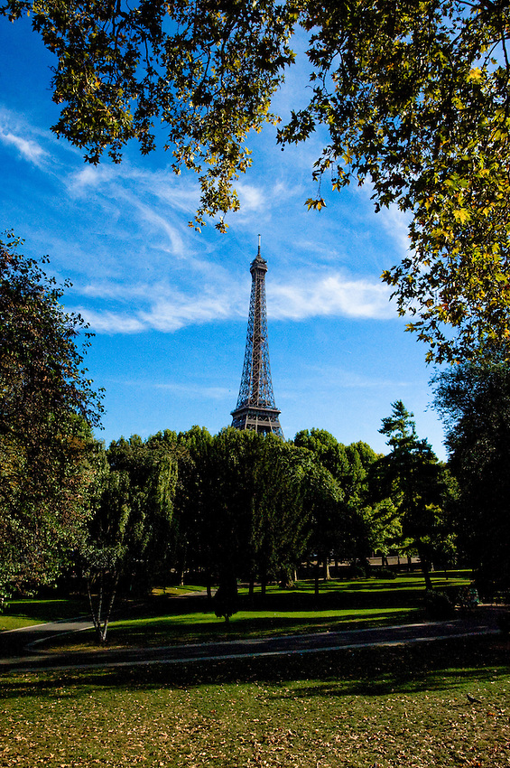 Eiffel Tower viewed from a park in Paris, France.