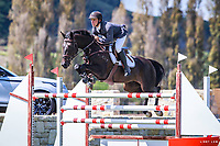 AUS-Clint Beresford rides Emmaville Jitterbug during the Gold Tour Horse Grand Prix 1.40-1.50m. FINAL-3RD. Takapoto Estate Show Jumping. Sunday 4 March. Takapoto Estate. Maungatautari. New Zealand. Copyright Photo: Libby Law Photography