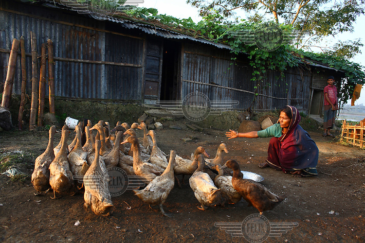 45 year old Amina Begum with the ducks she was able to buy with the help of a microfinance loan from IFAD (International Fund for Agricultural Development).