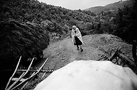 ROMANIA / Maramures / Valeni / August 2003..Returning from haymaking and caught in a downpour...© Davin Ellicson / Anzenberger..