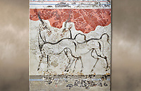 Monoan 'Antelope fresco' Wall painting from Akrotiri, Thira (Santorini). National archaeological Musuem Athens. 17th-16th cent BC.<br /> <br /> The Antelope fresco dep[icts two antelopes sketched with strong dark lines on a white plaster background. Their simple figures are slender and agile, and theri movements reserved are reserved yet expressive. From the same room as the 'Boxing Children' fresco the emsemble may have had a larger symbolic meaning. Room B1, Building B.