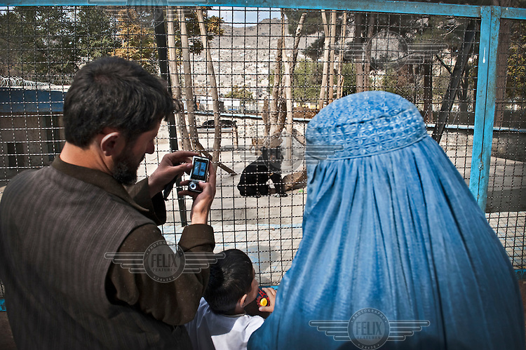 A man shows his wife a picture he has taken of a black bear in Kabul Zoo. His wife wears a burqa and their son between them takes a look at the bear.