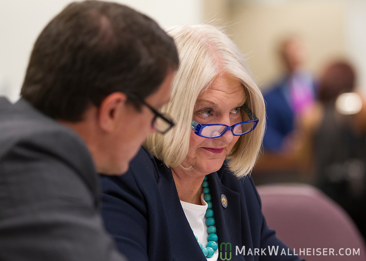 David Daniel, left, a lobbyist with Smith, Bryan & Myers, talks with Sen. Linda Stewart, D-Orlando, after the Democratic Caucus meeting in the Senate office building at the Florida Capitol in Tallahassee, Florida.