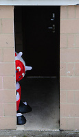 Lincoln City mascot Poacher the Imp peeks round a wall as he waits to entertain the crowd<br /> <br /> Photographer Chris Vaughan/CameraSport<br /> <br /> The EFL Sky Bet League Two - Lincoln City v Morecambe - Saturday August 12th 2017 - Sincil Bank - Lincoln<br /> <br /> World Copyright &copy; 2017 CameraSport. All rights reserved. 43 Linden Ave. Countesthorpe. Leicester. England. LE8 5PG - Tel: +44 (0) 116 277 4147 - admin@camerasport.com - www.camerasport.com
