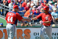 Washington Nationals shortstop Anthony Rendon #6 shakes hands with third base coach Trent Jewett #44 rounding the bases after hitting a home run during a Spring Training game against the Philadelphia Phillies at Bright House Field on March 6, 2013 in Clearwater, Florida.  Philadelphia defeated Washington 6-3.  (Mike Janes/Four Seam Images)