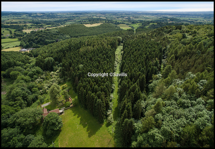 BNPS.co.uk (01202 558833)<br /> Pic: Savills/BNPS<br /> <br /> Fancy Living in this Hell Hole??<br /> <br /> A stunning woodland paradise with an unfortunate name from a bloody battle fought almost 700 years ago has gone on the market for £650,000.<br /> <br /> Hell Hole Cottage and Woodland near Kilburn, Yorkshire, is believed to take its name from the Battle of Byland, fought between Robert the Bruce and King Edward II in 1322.<br /> <br /> The picturesque valley saw English soldiers massacred by invading Scottish forces when the hapless king failed to protect his rear ranks and the Scots attacked from part of the hill above Edward's army.<br /> <br /> Today there is nothing to indicate the area's dark past, with a beautiful stone and timber character cottage set in 89 acres of woodland, which is being sold by Savills
