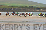 Action from the Beal Ban Strand Horse Racing in Ballyferriter last Sunday.   Copyright Kerry's Eye 2008