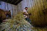 A worker maintains a horse stable at Churchill Downs race track in Louisville Kentucky, home of the famed Kentucky Derby.