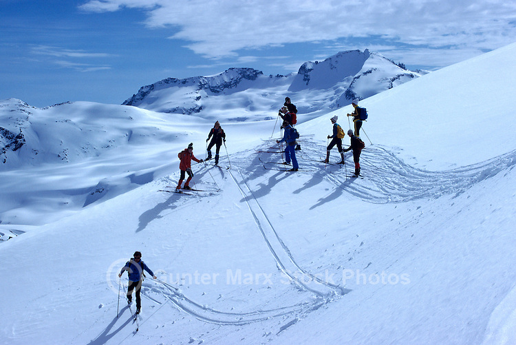 "A Group of People cross-country skiing in the Alpine Region of ""Black Tusk"", in Garibaldi Provincial Park, in the Coast Mountains near Whistler, BC, British Columbia, Canada"