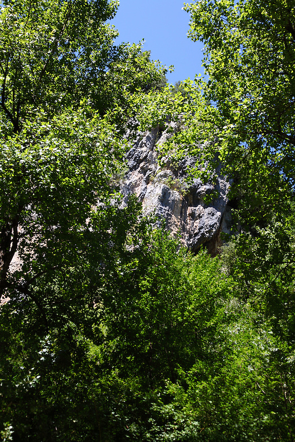 The beautiful rocks, surrounded by the green foliage of some high trees, which are on the top of the entrance to the cave of Collepardo. Digitally Improved Photo.