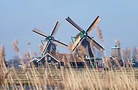 Nederland -  Zaanstad -  2018. Molens in Zaanse Schans.   Foto Berlinda van Dam / Hollandse Hoogte