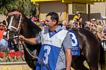 DEL MAR, CA  SEPTEMBER 1:#3 Watch Me Burn, in the paddock of the Del Mar Debutante (Grade 1) on September 1, 2018, at Del Mar Thoroughbred Club in Del Mar, CA.(Photo by Casey Phillips/Eclipse Sportswire/Getty ImagesGetty Images
