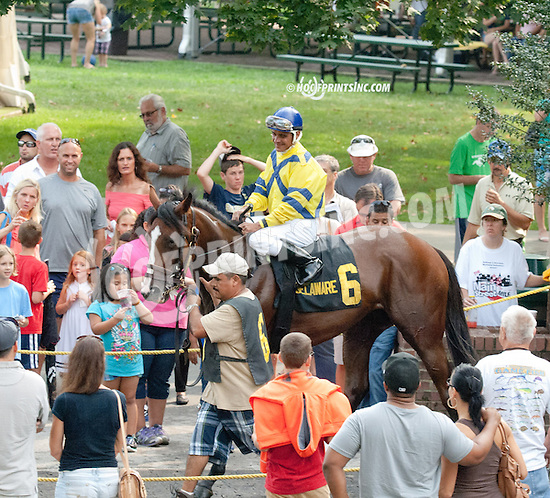 Con Gee before The Irish Sonnet Stakes at Delaware Park on 9/2/13