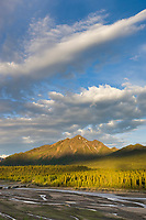 Landscape of the Teklanika river, Denali National Park, Interior, Alaska.