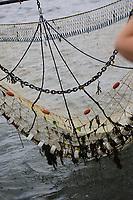 Netz wird zum Schaufischfang von der MS Seestern ins Wasser gelassen - 16.08.2018: Fischfang und Rundfahrt von Neuharlingersiel
