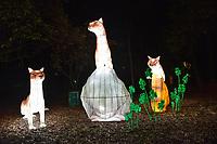 BOGOTA - COLOMBIA, 02-01-2020: En el Jardín Botánico de Bogotá se presenta el Festival Brilla Colombia que llega por primera vez a Bogotá para exhibir 500 esculturas gigantes luminosas, las cuales han sido traídas desde China gracias a una muestra que está presente simultáneamente en París, Dublín y Londres. / In the Botanical Garden of Bogotá, the Brilla Colombia Festival is presented, which comes to Bogotá for the first time to exhibit 500 luminous giant sculptures, which have been brought from China thanks to a sample that is present simultaneously in Paris, Dublin and London. Photo: VizzorImage/ Gabriel Aponte / Staff