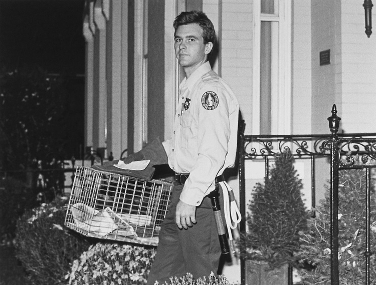 David Dares, humane officer, removing the almost dead squirrel from Congressman Rep. Pete Stark, D-Calif., backyard after being caught in a trap for almost 24 hours on Nov. 14, 1991. (Photo by Chris Ayres/CQ Roll Call)