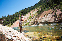 Jack Kos, of Christchurch, New Zealand, cast to rising cutthroat trout in the Grand Canyon of the Yellowstone in Yellowstone National Park.