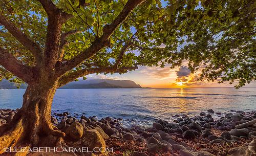 Puu Poa Sunset