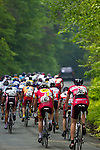 Racers in the 2010 Killington Stage Race.  These images were taken during the third stage, the road race, Woodstock, Vermont.