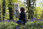 Island Equus. Equine Assisted Therapy on the Isle of Wight.
