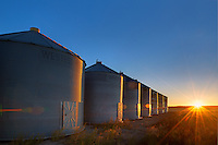 Grain bins at sunrise<br /> near Swift Current<br /> Saskatchewan<br /> Canada