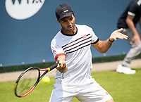 Rosmalen, Netherlands, 11 June, 2019, Tennis, Libema Open, Mens doubles Jean Julien Rojer (NED) <br /> Photo: Henk Koster/tennisimages.com