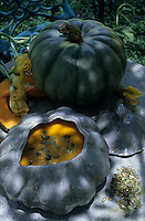 """Océanie/Australie/Queensland/Env de Gordonvale : Soupe à la citrouille """"Pumpkin cream soup"""" - Recette de Jan Alley du """" Riverstone House"""""""