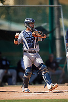 Detroit Tigers catcher Sam McMillan (32) throws the ball back to the pitcher during an Instructional League game against the Atlanta Braves on October 10, 2017 at the ESPN Wide World of Sports Complex in Orlando, Florida.  (Mike Janes/Four Seam Images)