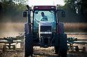 19/09/18 - CULHAT - PUY DE DOME - FRANCE - Andainage et recolte de paille de mais apres moisson - Photo Jerome CHABANNE