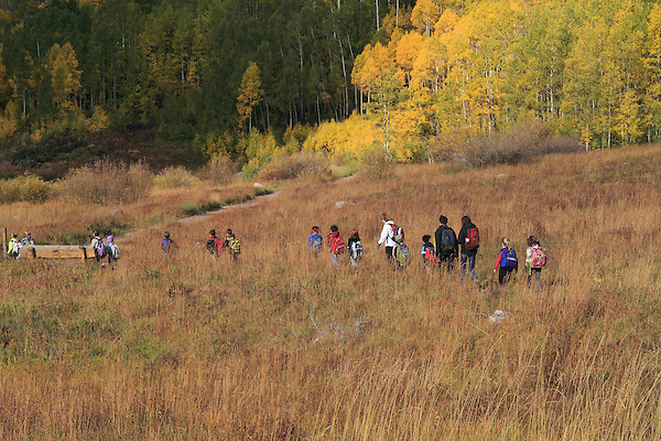 Group of Caucasian students and teacher hiking in a meadow with autumn Aspen trees, near the town of Aspen, Colorado, USA