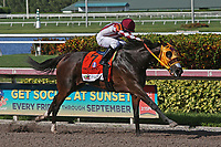 HALLANDALE BEACH, FL - JULY 01:   #7 Curlin's Approval  wth jockey  Luis Saez on board, wins the G2 Princess Rooney Handicap Stakes at Gulfstream Park on July 01, 2017 in Hallandale Beach, Florida. (Photo by Liz Lamont/Eclipse Sportswire/Getty Images)