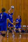 2 November 2014: Yeshiva University Maccabee Middle Blocker Shana Wolfstein (3), a Senior from Burlington,VT, in action against the Sarah Lawrence Gryphons at SUNY Purchase College, in Purchase, NY. The Maccabees defeated the Gryphons 3-2 in the NCAA Division III Women's Volleyball Skyline matchup. Wolfstein ended her 2014 season with 17 Kills, 56 Digs, 3 Blocks and 5 Aces for the Lady Macs. Mandatory Credit: Ed Wolfstein Photo *** RAW (NEF) Image File Available ***