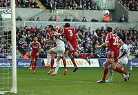 Saturday, 15 March 2014<br /> Pictured: <br /> Re: Barclay's Premier League, Swansea City FC v West Bromwich Albion at the Liberty Stadium, south Wales, UK.