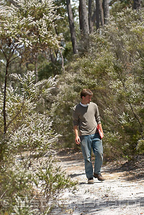 Ryan Phillips, PhD student of Botanic Gardens and Park Authority, searching for Hammer Orchids on sandy soils of coastal Western Australia.