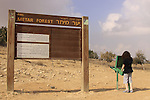 Israel, Southern Hebron Mountain, Metar forest
